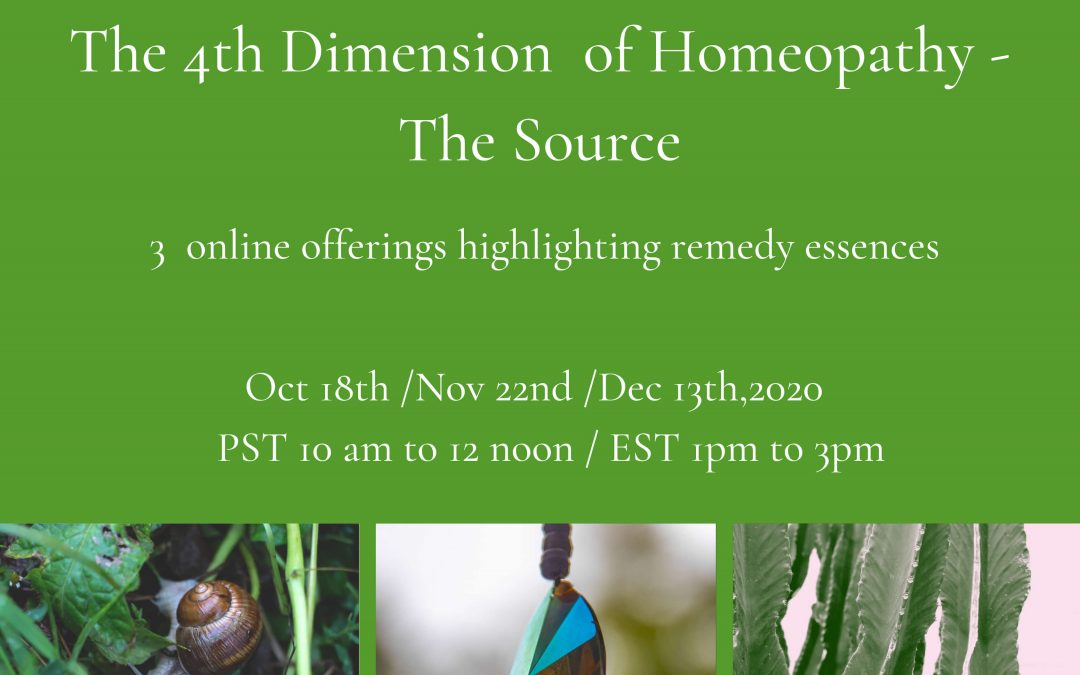 The 4th Dimension of Homeopathy – The Source