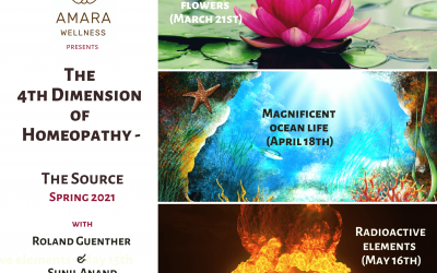 The 4th Dimension of Homeopathy – The Source – 2021 Spring series