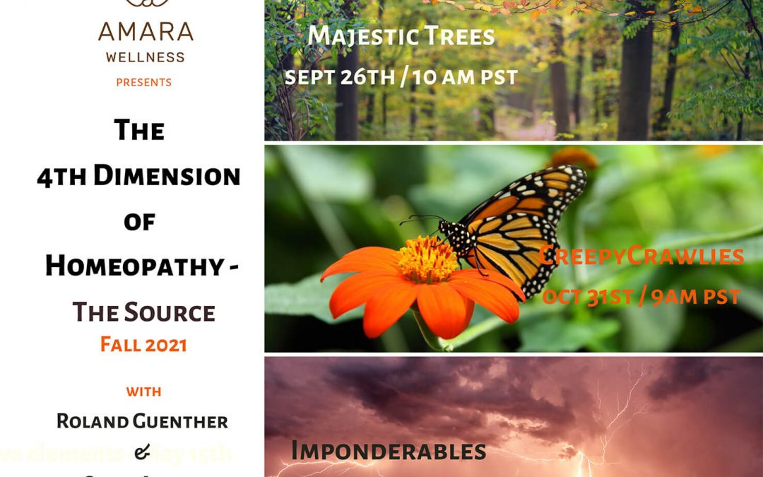The 4th Dimension of Homeopathy – Seminar Series Fall 2021